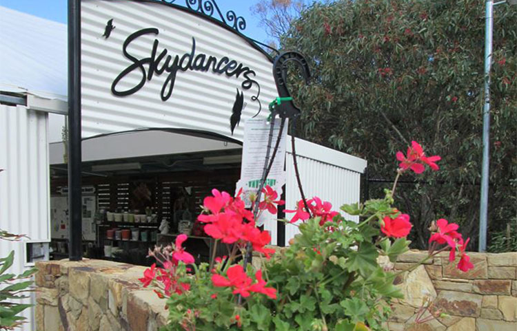 Skydancers Butterfly House and Licenced Cafe